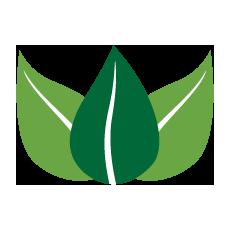 Icon 3 grüne Blätter